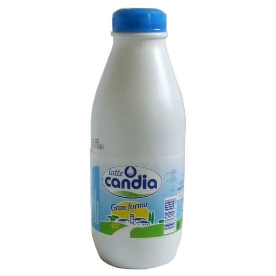 latte candia
